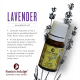 Lavender Essential Oil  10ml Passion Indulge