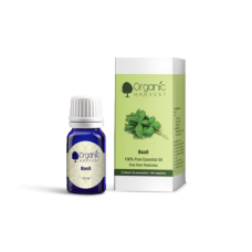 Basil Essential Oil 10ml Organic Harvest
